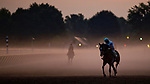 SARATOGA SPRINGS, NY - AUGUST 25: Horses workout on the Oklahoma Training Track at sunrise on Travers Stakes Day at Saratoga Race Course on August 25, 2018 in Saratoga Springs, New York. (Photo by Scott Serio/Eclipse Sportswire/Getty Images)