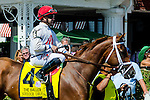 SARATOGA SPRINGS - AUGUST 27: Sheer Drama #4, ridden by Joe Bravo, during the post parade before the Ballerina Stakes on Travers Stakes Day at Saratoga Race Course on August 27, 2016 in Saratoga Springs, New York. (Photo by Dan Heary/Eclipse Sportswire/Getty Images)