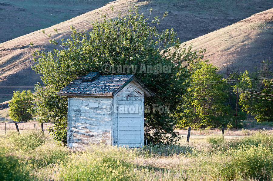 White outhouse in a field, Starbuck, Wash.