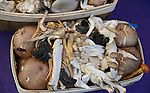 A variety of mushroom are boxed for sale at a California farmer's market. (DOUG WOJCIK MEDIA)