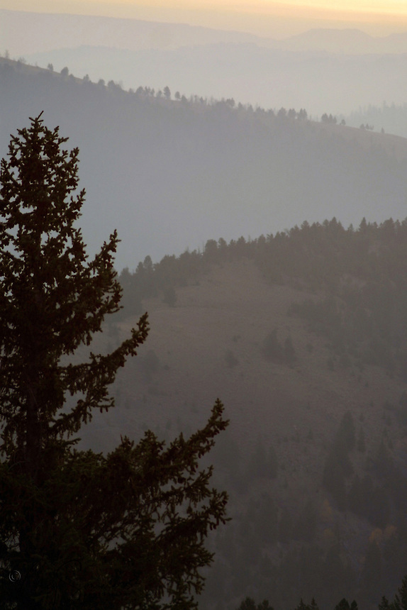 Forest fire smoke is a fact of life in Yellowstone, with fire being a necessary element of its ecosystem.
