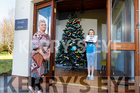 Davina O'Connell Hanley and her daughter Saídhbh Amira decorating the 'Tree of Hope' at their home in Kilmorna Listowel on Tuesday.