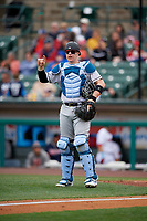 Charlotte Knights catcher Zack Collins (8) during an International League game against the Rochester Red Wings on June 16, 2019 at Frontier Field in Rochester, New York.  Rochester defeated Charlotte 3-2 in the second game of a doubleheader.  (Mike Janes/Four Seam Images)