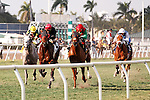 Point of Entry (red cap, black silks) shows the way to the finish line in the Kittens Joy Gulfstream Park Turf Handicap (G1T) at Gulfstream Park.  Hallandale Beach Florida. 02-09-2013