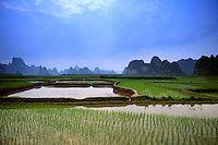 Colorful scenic of rice field Yangshou China