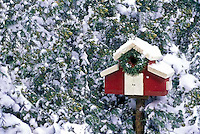 Red and white barn birdhouse decorated for Christmas with wreath and nestled among Cedar trees in snow