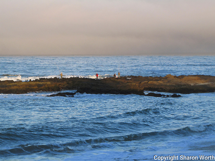 A group cast their lines on a rocky outcrop at Bean Hollow State Beach on California's Coast