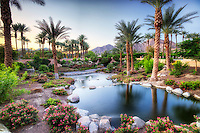Pond in Garden. Palm Desert, California