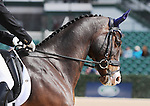 April 24, 2014: Trading Aces and Phillip Dutton. compete on the first day of Dressage at the Rolex Three Day Event in Lexington, KY at the Kentucky Horse Park.  Candice Chavez/ESW/CSM