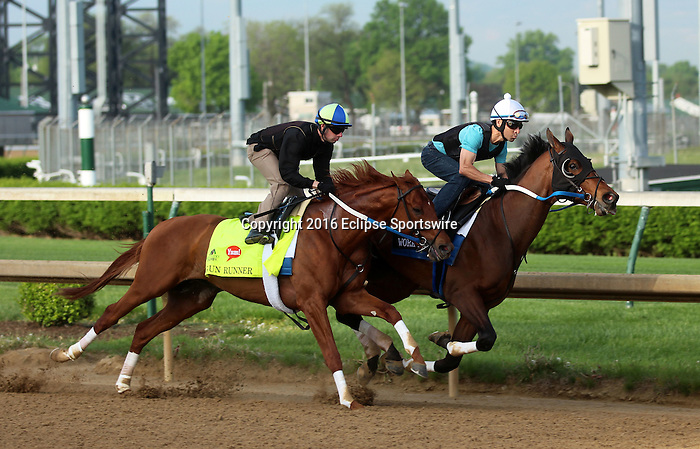 LOUISVILLE, KY - APRIL 25: Gun Runner (Candy Ride x Quiet Giant, by Giant's Causeway) works 6 furlongs in company with workmate Gold Hawk in 1:12.20 at Churchill Downs, Louisville KY in preparation for the Kentucky Derby. Owner Winchell Thoroughbreds LLC and Three Chimneys Farm, trainer Steven M. Asmussen. (Photo by Mary M. Meek/Eclipse Sportswire/Getty Images)
