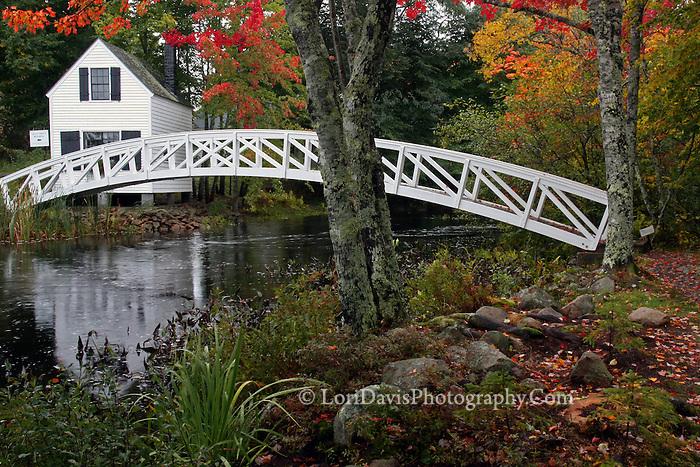#L35 Autumn At The Somesville Footbridge