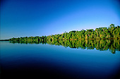 Juruena, Brazil. Forested river bank reflected in the water with no clouds in the sky.