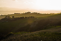 Tuscan Hillside, Italy