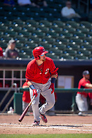 Springfield Cardinals catcher Brian O'Keefe (23) takes off for first on May 19, 2019, at Arvest Ballpark in Springdale, Arkansas. (Jason Ivester/Four Seam Images)
