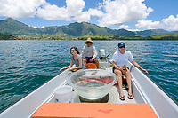 Scientists and graduate student collecting hammerhead shark pups for research, Sphyrna lewini, Hawaii Institute of Marine Biology, Kaneohe, Oahu, Hawaii