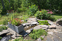 Water stream pond garden with container pot trough and rock landscaping with lawn, Echinaca, Monarda, Cuphea, Sedum, waterlilies Nymphaea