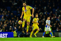 James Tomkins of Crystal Palace (5) In action ,during the Premier League match between Brighton and Hove Albion and Crystal Palace at the American Express Community Stadium, Brighton and Hove, England on 4 December 2018. Photo by Edward Thomas / PRiME Media Images.