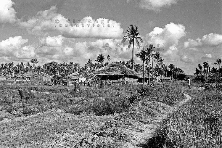 In Mozambico, nella provincia della Zambesia, è attiva la produzione della copra dalla noce di cocco