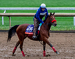 October 30, 2020: Lady Prancealot, trained by trainer Richard Baltas, exercises in preparation for the Breeders' Cup Filly & Mare Turf at Keeneland Racetrack in Lexington, Kentucky on October 30, 2020. Scott Serio/Eclipse Sportswire/Breeders Cup/CSM