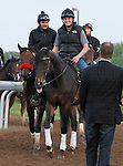 LEXINGTON, KY - APRIL 23: Nyquist leaving the track, while trainer Doug O'Neill looks on after working in preparation for the Kentucky Derby on May 7th at Churchill Downs in Louisville, KY.  April 23, 2016 in Lexington, Kentucky. (Photo by Candice Chavez/Eclipse Sportswire/Getty Images)