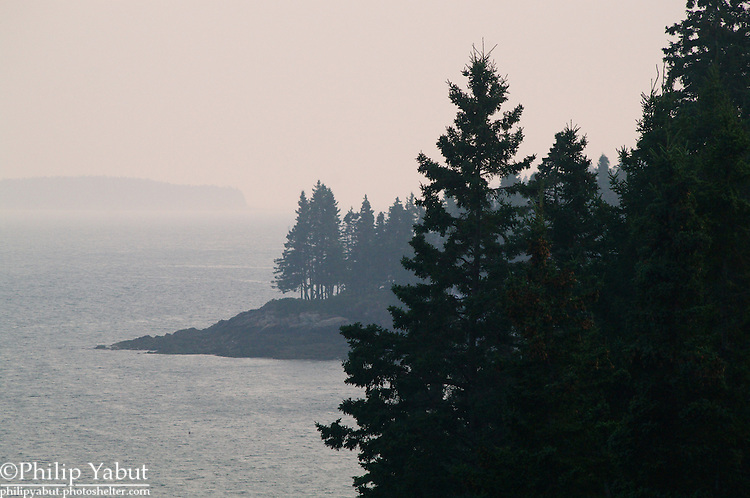 Trees grow almost to the shores of Maine's jagged coastline -- as seen from near Owl's Head Lighthouse.