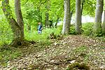 Europa, DEU, Deutschland, Baden-Wuerttemberg, Schwaebische Alb, Bissingen an der Teck, Ochsenwang, Hochflaeche der Schwaebischen Alb, Landschaft, Wanderer, Touristen, Natur, Umwelt, Landschaft, Jahreszeiten, Stimmungen, Landschaftsfotografie, Landschaften, Landschaftsphoto, Landschaftsphotographie, <br /> <br /> [Fuer die Nutzung gelten die jeweils gueltigen Allgemeinen Liefer-und Geschaeftsbedingungen. Nutzung nur gegen Verwendungsmeldung und Nachweis. Download der AGB unter http://www.image-box.com oder werden auf Anfrage zugesendet. Freigabe ist vorher erforderlich. Jede Nutzung des Fotos ist honorarpflichtig gemaess derzeit gueltiger MFM Liste - Kontakt, Uwe Schmid-Fotografie, Duisburg, Tel. (+49).2065.677997, ..archiv@image-box.com, www.image-box.com]