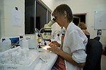 """Charlotte Watson working in the Lizard Island Research Station lab with her eyes """"glued"""" to her microscope looking at polychaete worms."""