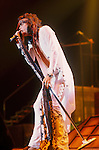 Aerosmith vocalist, Steven Tyler, performs during various concerts in the group's career.