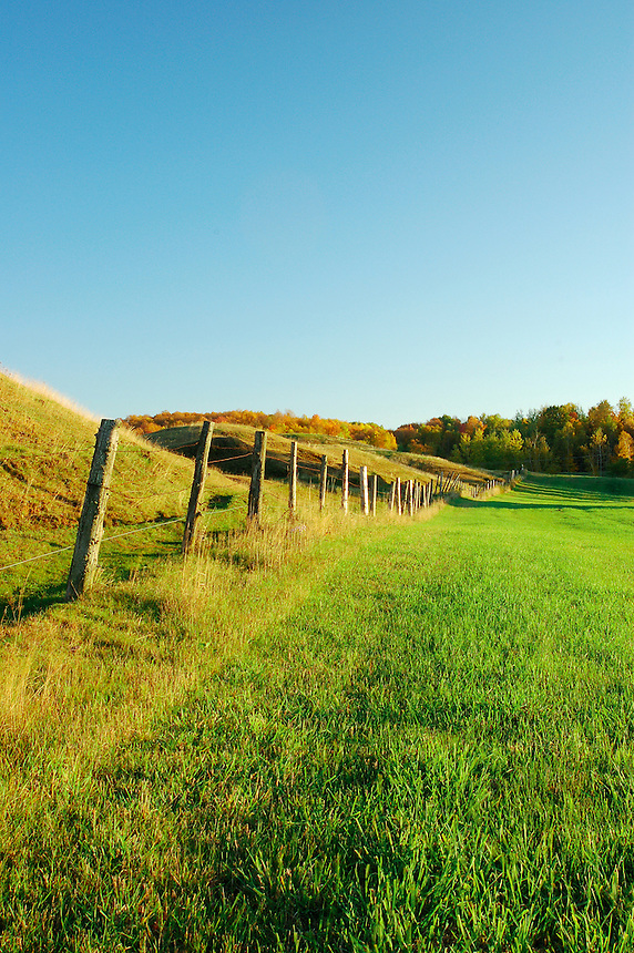 An old fence row and pasture during an autumn evening. Marquette County, Michigan.
