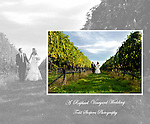 Raphael Vineyard Wedding album