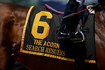 June 5, 2021: Search Results, #6, ridden by Javier Castellano, wins the Acorn Stakes on Belmont Stakes Day at the Belmont Stakes Festival at Belmont Park in Elmont, New York. Scott Serio/Eclipse Sportswire/CSM