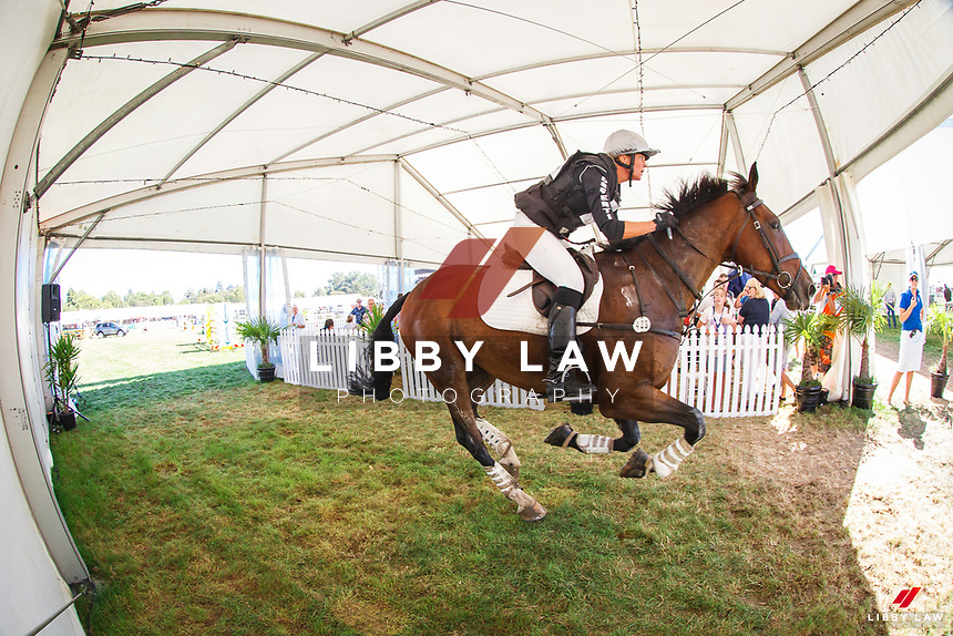 NZL-Elise Edwards-Smith (QUANTICO) FINAL-19TH: HANSEN PRODUCTS CIC2*: 2016 NZL-Horse of the Year Show, Hawkes Bay Showgrounds, Hastings (Saturday 5 March) CREDIT: Libby Law COPYRIGHT: LIBBY LAW PHOTOGRAPHY