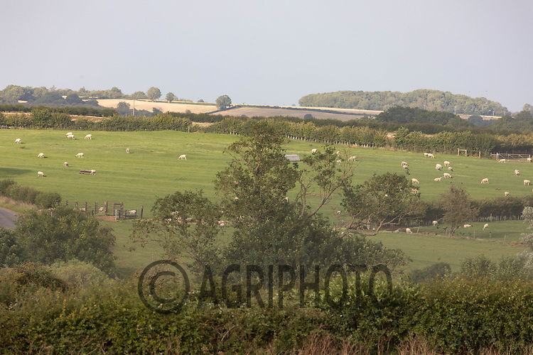 22.7.2020 Farming landscape  in Rutland  ©Tim Scrivener Photographer 07850 303986<br />      ....Covering Agriculture In The UK.
