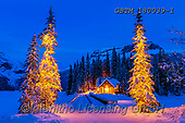Tom Mackie, CHRISTMAS LANDSCAPES, WEIHNACHTEN WINTERLANDSCHAFTEN, NAVIDAD PAISAJES DE INVIERNO, photos,+British Columbia, Canada, Canadian, Canadian Rockies, Emerald Lake, North America, Tom Mackie, USA, Yoho National Park, blue+hour, cabin, christmas trees, evening, horizontal, horizontals, illuminated, landscape, landscapes, light, lodge, national pa+rk, pine tree, pine trees, season, snow, time of day, twilight, weather, winter, wintery,British Columbia, Canada, Canadian,+Canadian Rockies, Emerald Lake, North America, Tom Mackie, USA, Yoho National Park, blue hour, cabin, christmas trees, evenin+,GBTM180039-1,#xl#