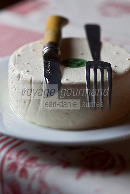 Europe/France/Rhône-Alpes/74/Haute-Savoie/Le Grand-Bornand: Tomme Blanche, en fait reblochon frais , au restaurant d'altitude:La cheminée au Col des Annes