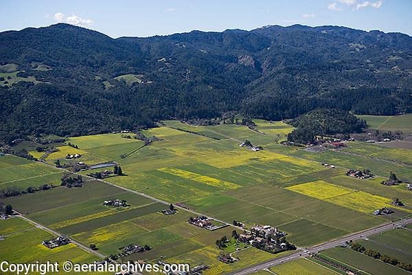 aerial photograph vineyards Napa Valley, California