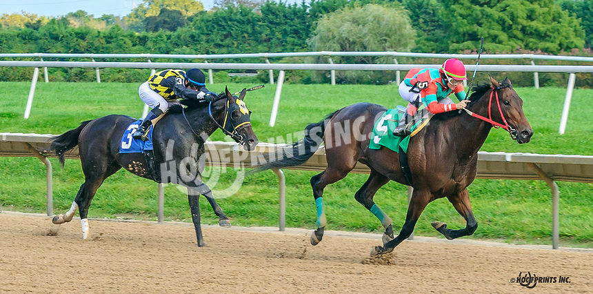 Quality Too Spare winning at Delaware Park on 10/6/21