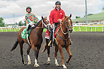 at the Summer Stakes at Woodbine Race Course in Toronto, Canada on September 13, 2014.
