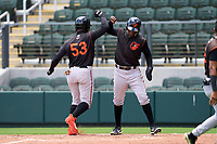 FCL Orioles Orange Isaac Bellony (53) and Ricardo Castro (10) celebrate after a home run during a game against the FCL Braves on July 22, 2021 at the CoolToday Park in North Port, Florida.  (Mike Janes/Four Seam Images)