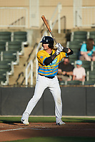 Michael Hickman (37) of the Rapidos de Kannapolis at bat against the Greensboro Grasshoppers at Kannapolis Intimidators Stadium on June 14, 2019 in Kannapolis, North Carolina. The Grasshoppers defeated the Rapidos de Kannapolis 4-1. (Brian Westerholt/Four Seam Images)