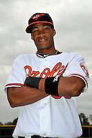 Feb 27, 2010; Tampa, FL, USA; Baltimore Orioles  infielder Pedro Florimon (69) during  photoday at Ed Smith Stadium. Mandatory Credit: Tomasso De Rosa