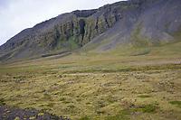 Halbinsel Snæfellsnes, Landzunge im West-Island, Island, Iceland