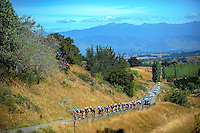 The peloton approaches the top of Millar's Road during stage three of the NZ Cycle Classic UCI Oceania Tour in Wairarapa, New Zealand on Tuesday, 24 January 2017. Photo: Dave Lintott / lintottphoto.co.nz