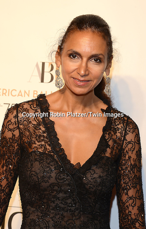Susan Fales Hill attends the Opening Night of American Ballet Theatre 2014 Fall Gala on October 22,2014 at the David Koch Theater at Lincoln Center in New York City. <br /> <br /> photo by Robin Platzer/Twin Images<br />  <br /> phone number 212-935-0770