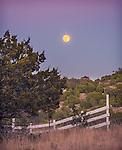 12.16.13 - Moon Rising...