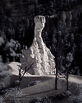 The Fist, Bryce Canyon, Utah (Infrared).  I don't know if this imposing hoodoo has an official name – I haven't been able to find one on the National Park map – but I've always called it the Fist.  When illuminated by low, late afternoon sunlight and captured in infrared, it can stand out dramatically against its background.<br /> <br /> Image ©2020 James D. Peterson