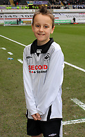 ATTENTION SPORTS PICTURE DESK<br /> Pictured: Swansea City mascot <br /> Re: Coca Cola Championship, Swansea City Football Club v Newcastle United at the Liberty Stadium, Swansea, south Wales. 13 February 2010