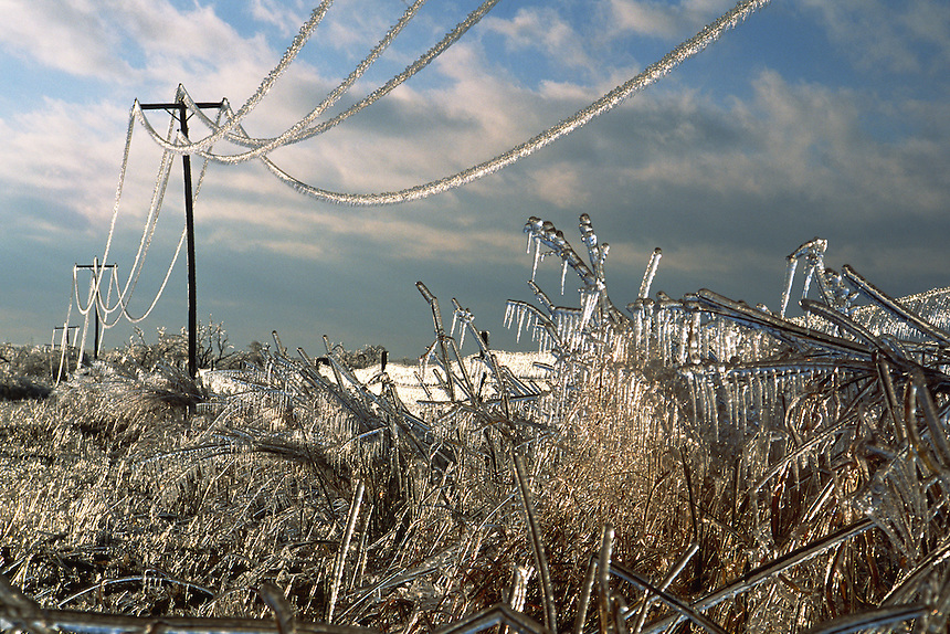 Ice strains power-lines to the breaking point after the passage a severe winter storm in central Oklahoma.