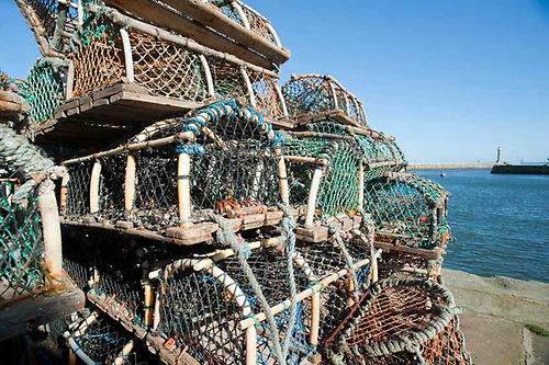 File image of pots used in lobster fishing