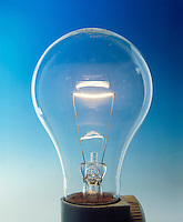 LIGHT BULB<br />